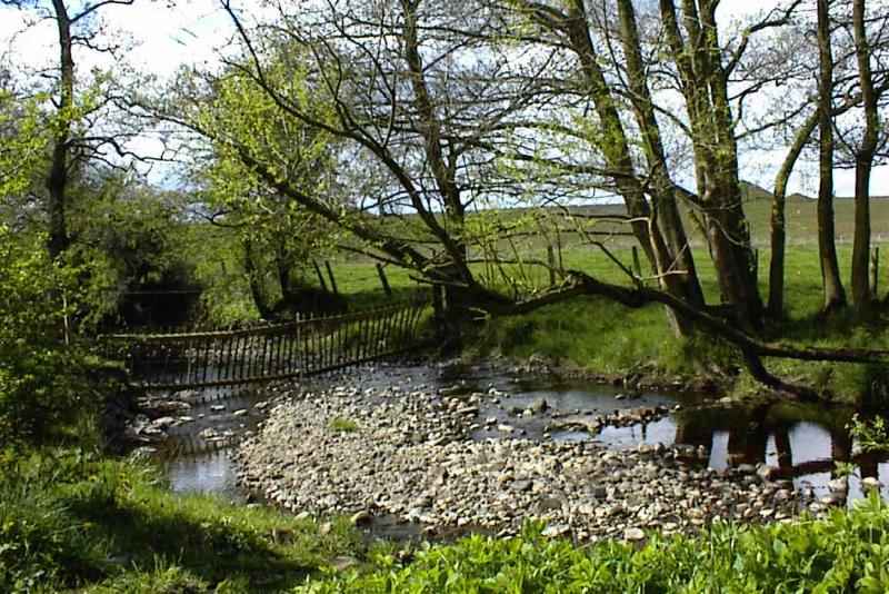 Edryford site